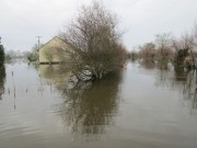 UK Flood Appeal
