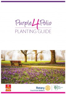 P4P Planting Guide Cover