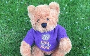 Rotary Polio Bear Thumbnail