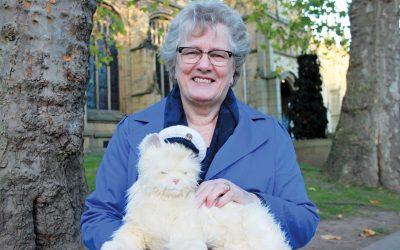 robotic cat easing dementia