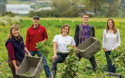 rotary members volunteer agriculture project