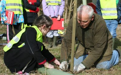 rotary member and child plant tree for rotary tree challenge