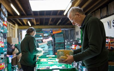 the trussell trust foodbank sorting out