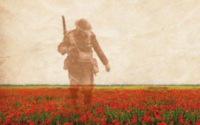 poppy field wwi soldier