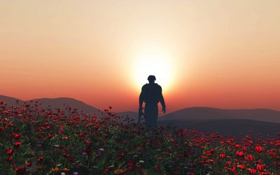 soldier walking poppies sunset rememberance