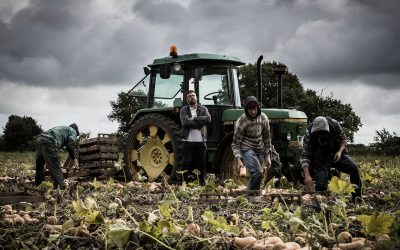 modern slavery agriculture