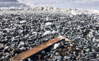 beach clean rotary wales
