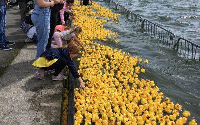 barry island duck race