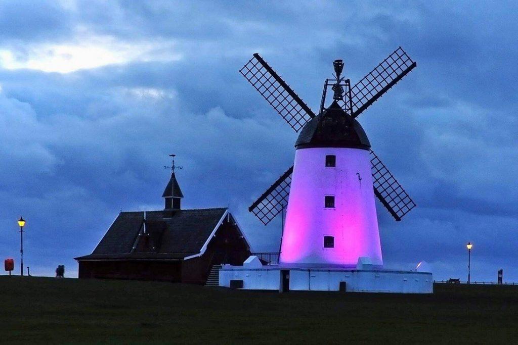 purple windmill world polio day