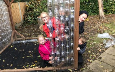 bottle greenhouse project