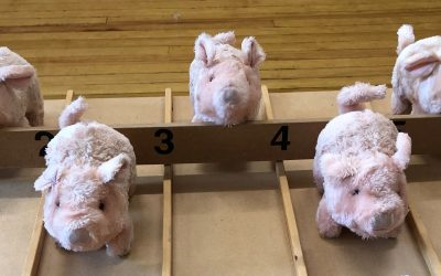 minster on sea rotary pig race